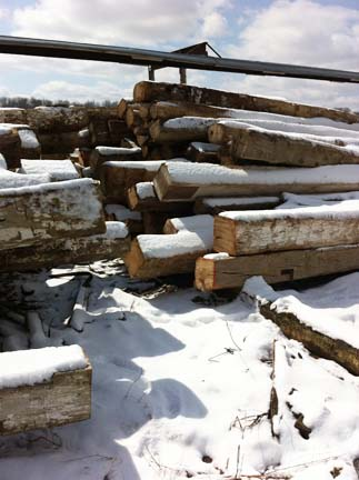 bpp elm beams